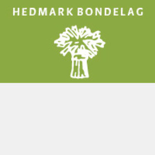 for widget hedmark bondelag ny